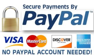 PayPal Payment 15